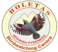 Casa Boletas